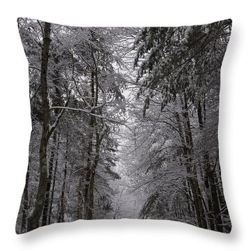 A Winters Path Throw Pillow