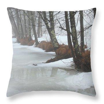 A Winter's Scene Throw Pillow by Karol Livote