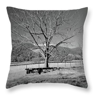 A Wintery Stand Throw Pillow