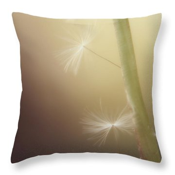 Throw Pillow featuring the photograph A Wish And A Prayer by Amy Tyler