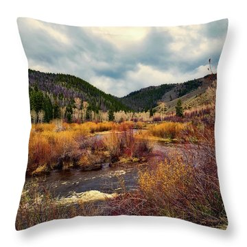 A Wyoming Autumn Day Throw Pillow by L O C