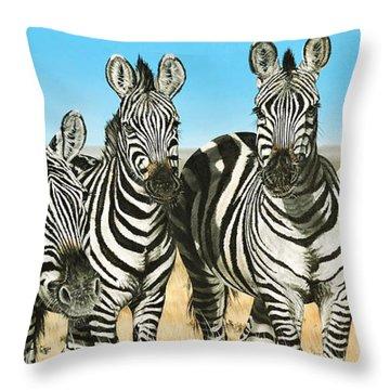 A Zeal Of Zebras Throw Pillow