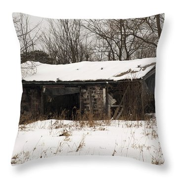 Abandoned And Cold Throw Pillow by Elaine Mikkelstrup