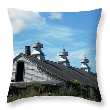 Abandoned Barn 1 Throw Pillow