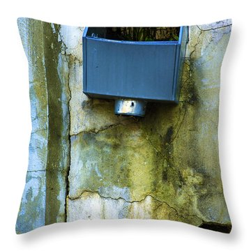 Abandoned Building Jacquelines Throw Pillow by Raymond Kunst
