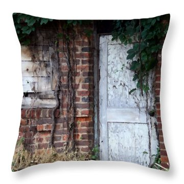 Abandoned Building Throw Pillow by Karen Harrison