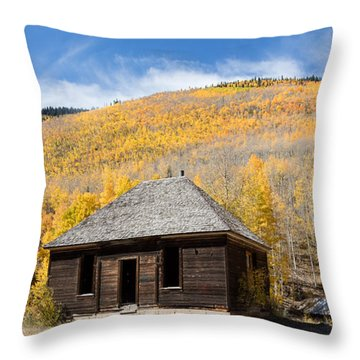 Throw Pillow featuring the photograph Abandoned Cabin Near The Old Mining Town Of Ironton by Carol M Highsmith