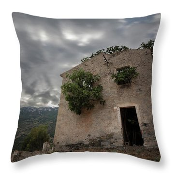 Abandoned Country Throw Pillow