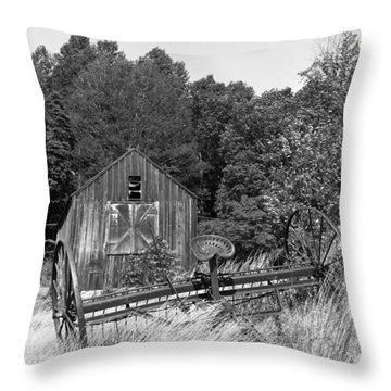 Abandoned Farm Atlantic Coast  Throw Pillow