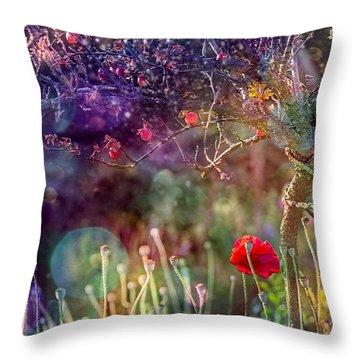 Abandoned Garden Throw Pillow