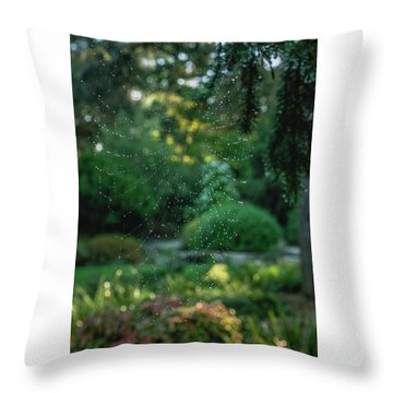 Morning Web Throw Pillow