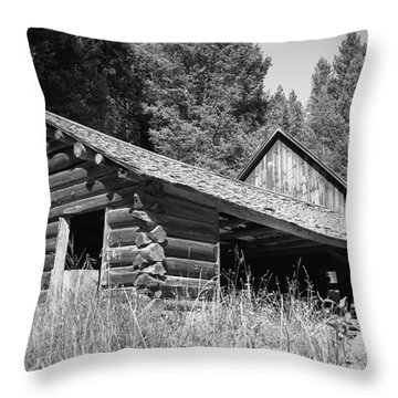 Abandoned Homestead Throw Pillow by Richard Rizzo
