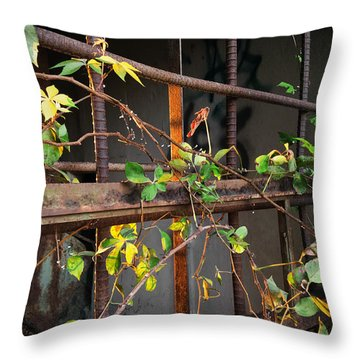 Abandoned Light Throw Pillow