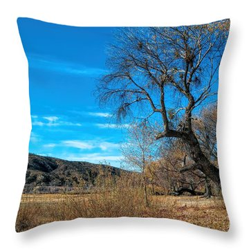 Forgotten Park Throw Pillow