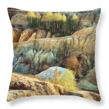 Abandoned Quarry 2 Throw Pillow