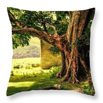 Abandoned Ruins Throw Pillow by Jenny Rainbow