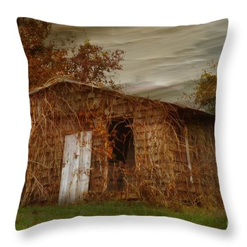 Abandoned Throw Pillow by Tamera James