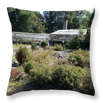 Abanoned Old Horticulture Throw Pillow