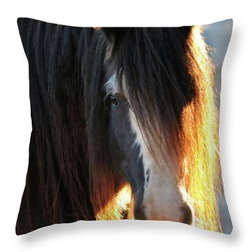 Abbey Glowing Throw Pillow