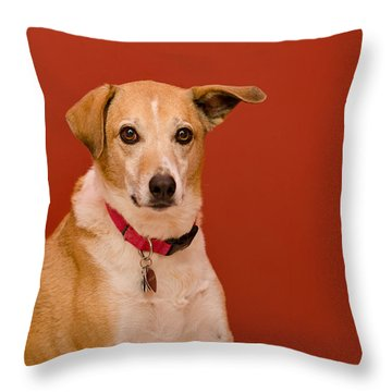 Abbie 1 Throw Pillow