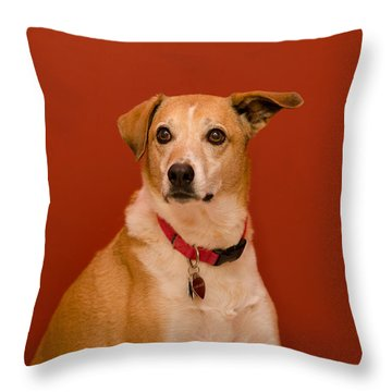 Abbie Throw Pillow