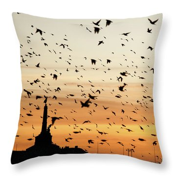 Aberystwyth Starlings At Dusk Flying Over The War Memorial Throw Pillow