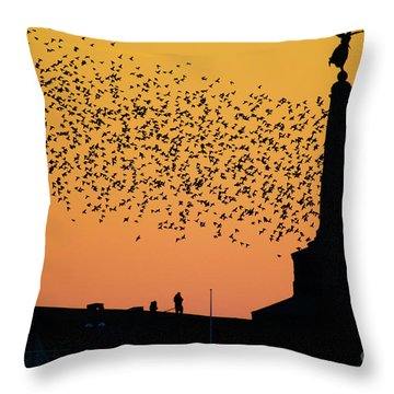 Aberystwyth Starlings Throw Pillow