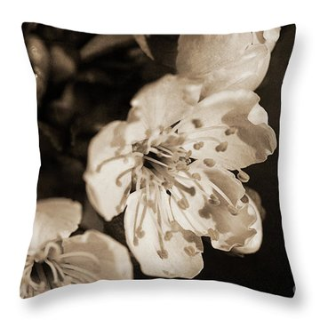 Throw Pillow featuring the photograph Abiding Elegance by Linda Lees
