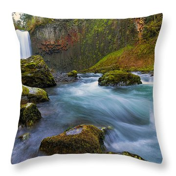 Abiqua Falls In Spring Throw Pillow by David Gn