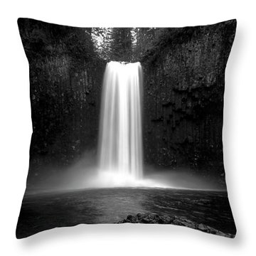 Abiqua's World Throw Pillow by Bjorn Burton