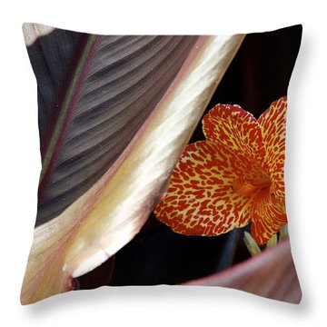 Ablaze In Color Throw Pillow