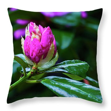 About To Unfold Throw Pillow