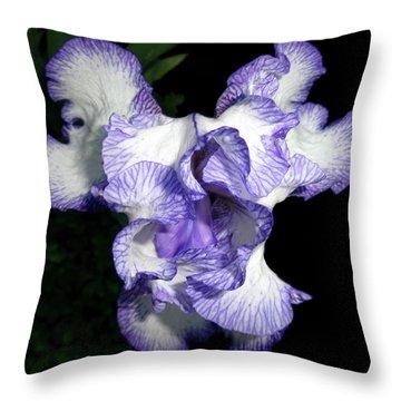 Above A Purple Edged Iris Throw Pillow by Tara Hutton
