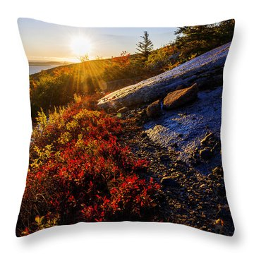 Above Bar Harbor Throw Pillow