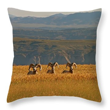 Above The Breaks-signed-#9386 Throw Pillow
