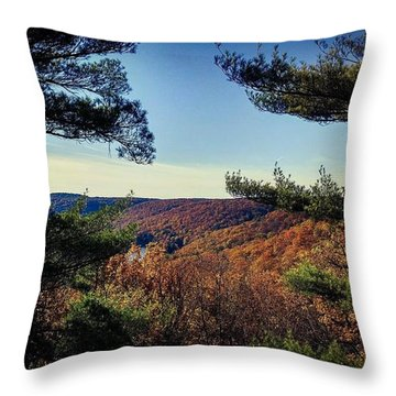 Above The Clarion River Throw Pillow