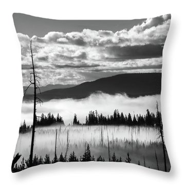 Throw Pillow featuring the photograph Rising Above by Colleen Coccia