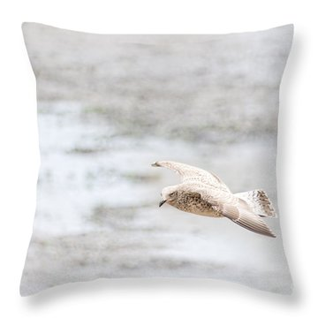 Throw Pillow featuring the photograph Above The Watten Sea 2 by Hannes Cmarits