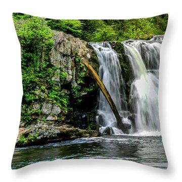 Abram Falls Throw Pillow