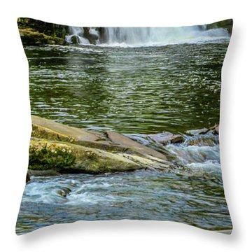 Abrams Falls 2 Throw Pillow