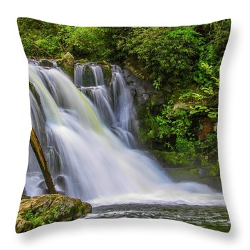 Abrams Falls 3 Throw Pillow