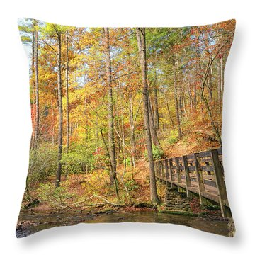 Abrams Falls Trailhead Throw Pillow
