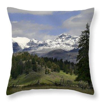Absaroka Mts Wyoming Throw Pillow