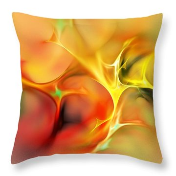Abstract 061410a Throw Pillow by David Lane