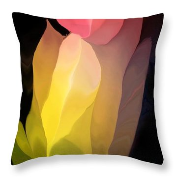 Abstract 082312 Throw Pillow by David Lane