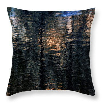 Abstract 1050 Throw Pillow