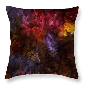 Abstract 5-23-09 Throw Pillow by David Lane