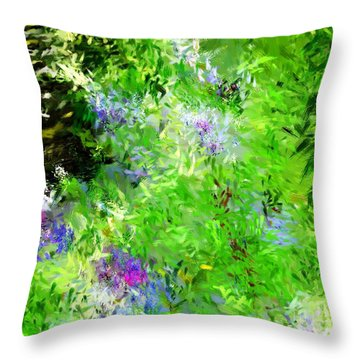 Abstract 5-26-09 Throw Pillow by David Lane