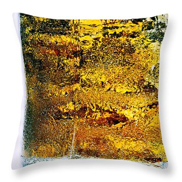 Abstract #8442 Throw Pillow