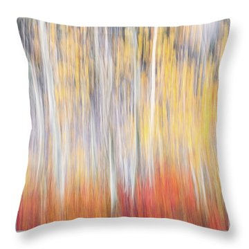 Abstract Autumn Throw Pillow